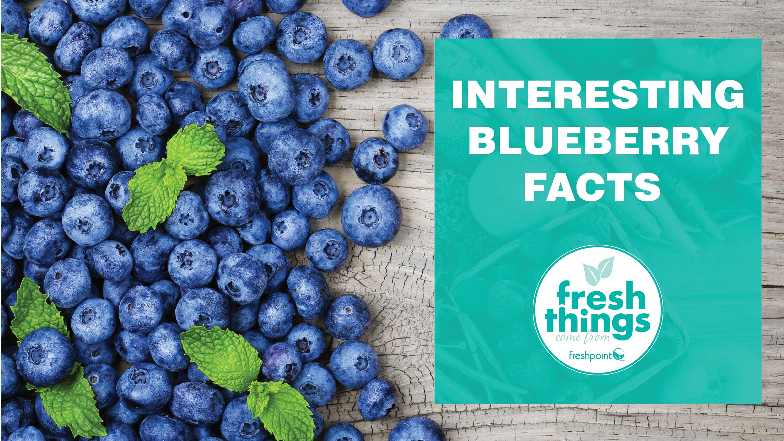 freshpoint-produce-blueberries