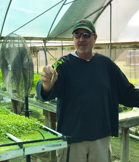 freshpoint produce peas shoots and tendrils cahaba club