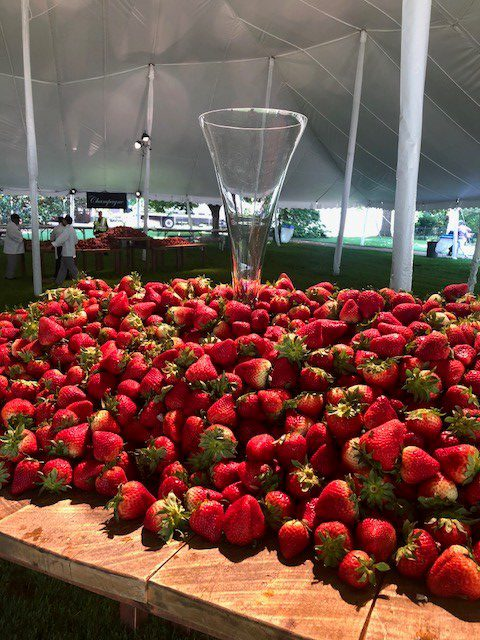 Strawberries and Champagne freshpoint produce vanderbilt university 1