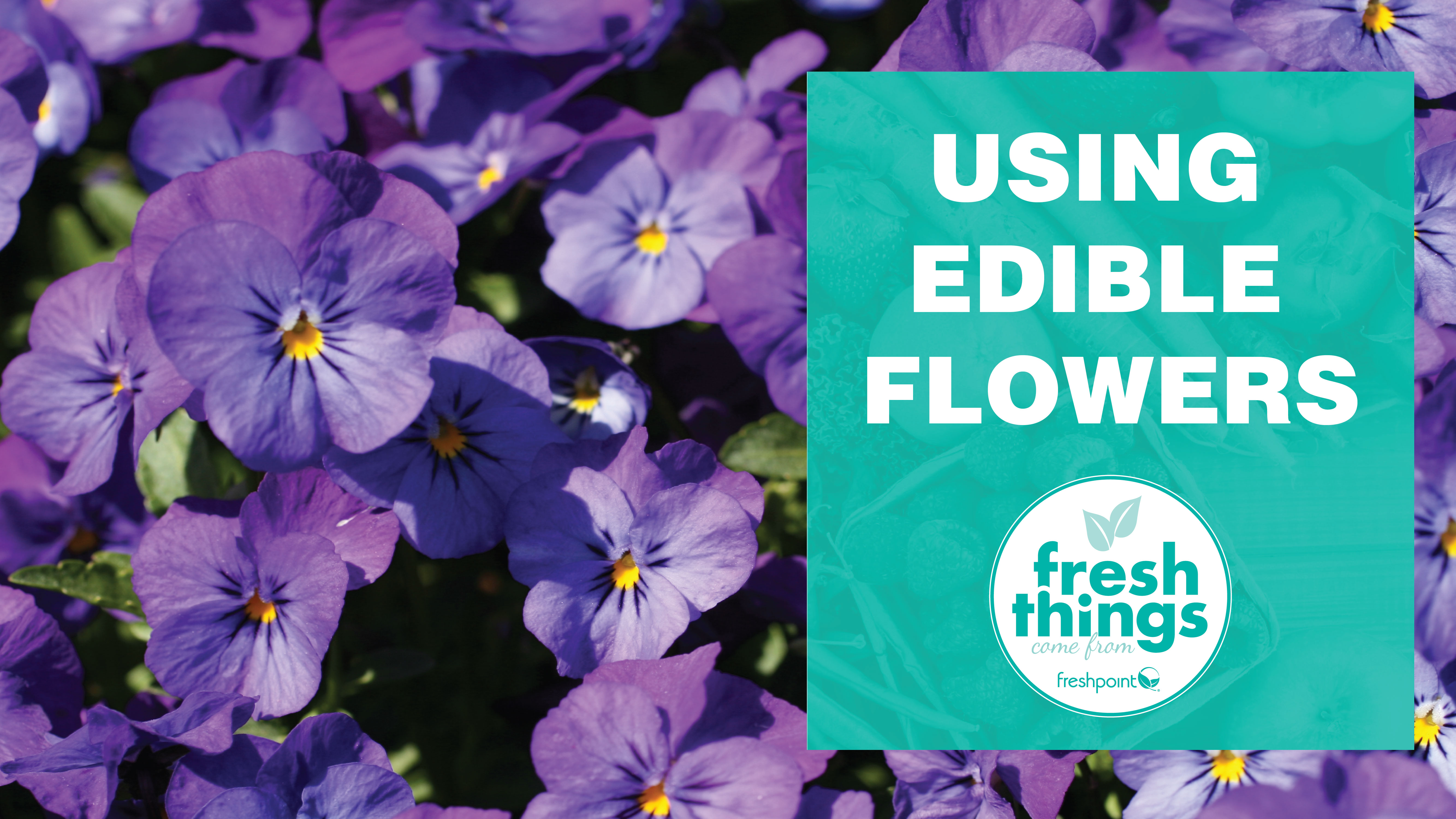 freshpoint-produce-edible-flowers