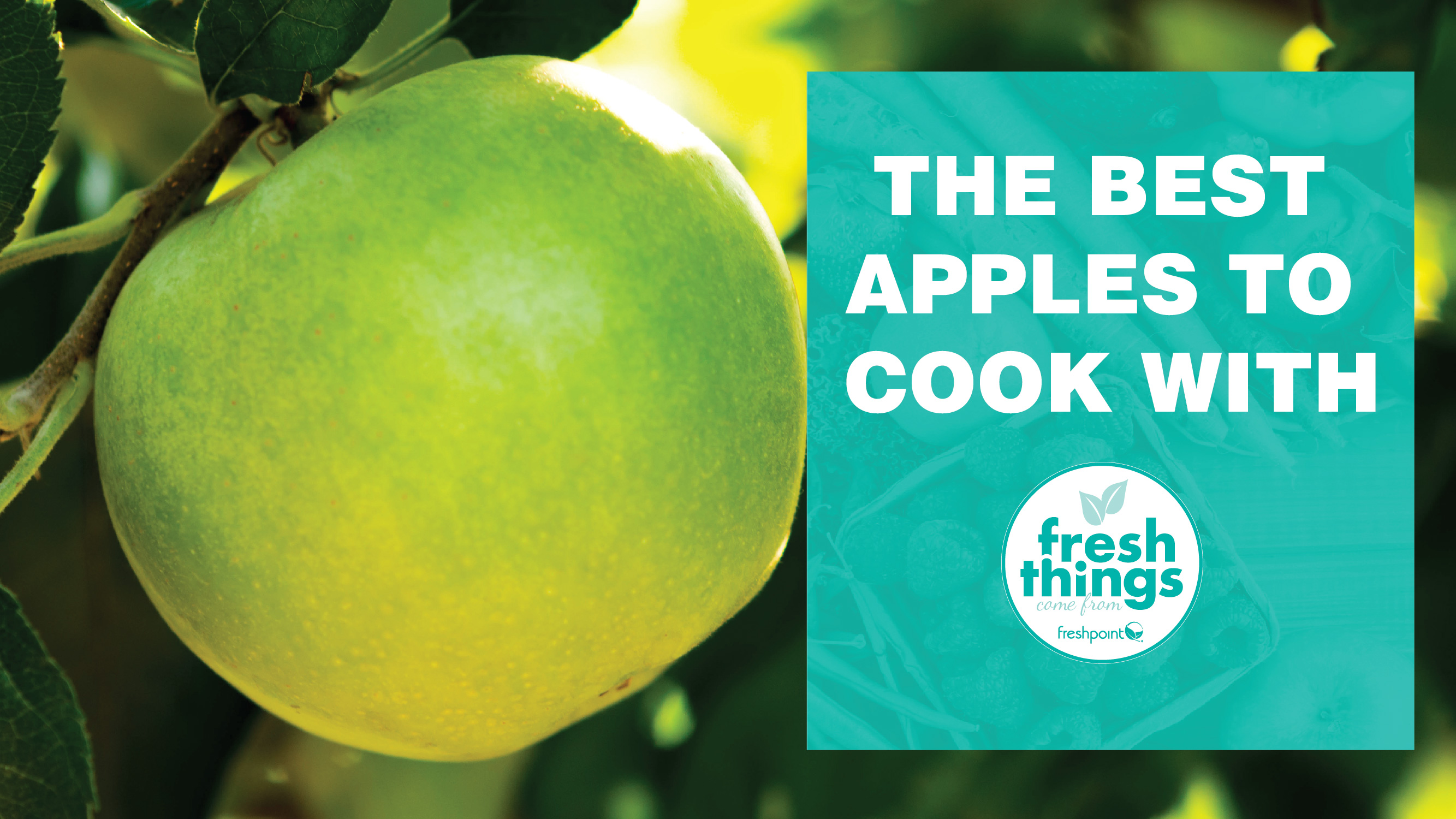 the-best-apples-to-cook-with