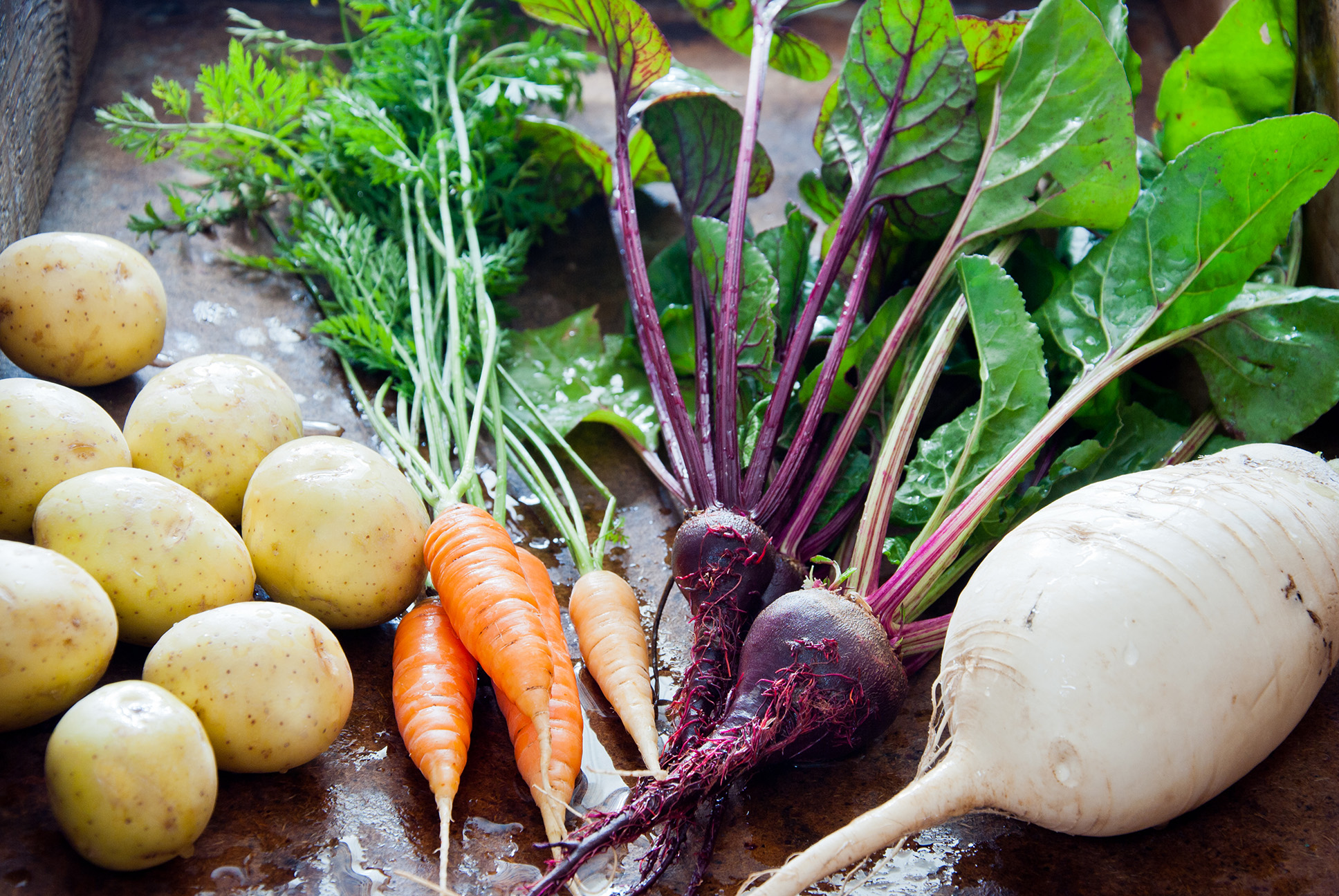 root vegetables and tubers freshpoint produce 101