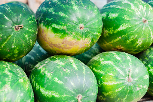 Produce-101-melons