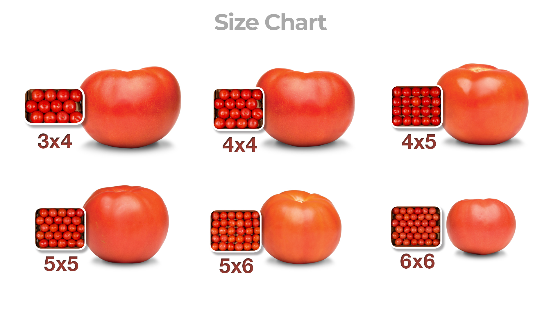 freshpoint produce 101 tomatoes size chart