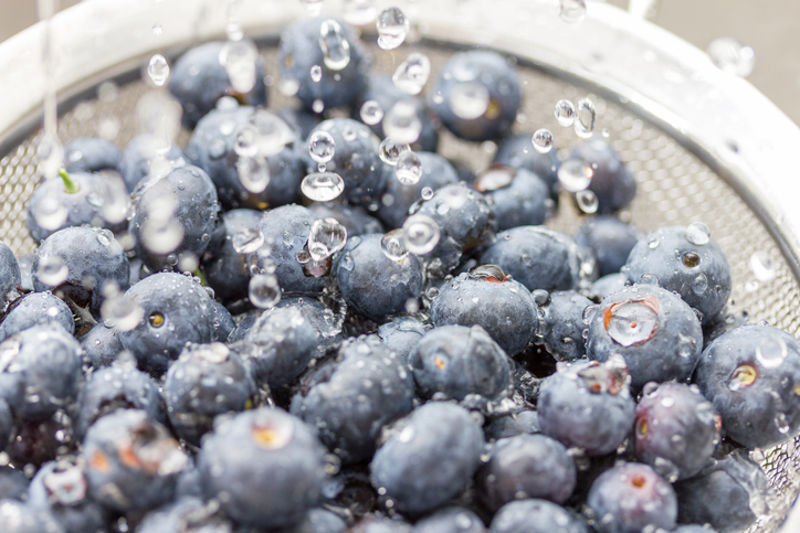 freshpoint-produce-101-berries-blueberries-bloom