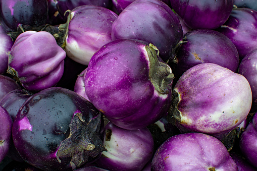 freshpoint types of eggplant sicilian