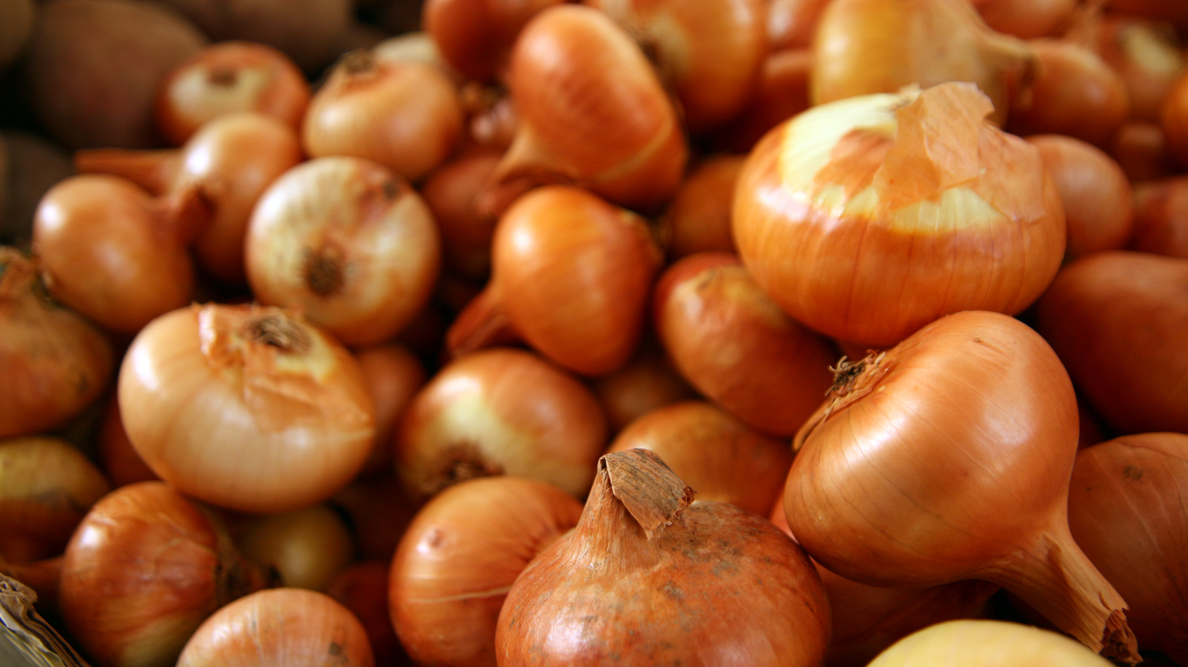 freshpoint produce sweet onions