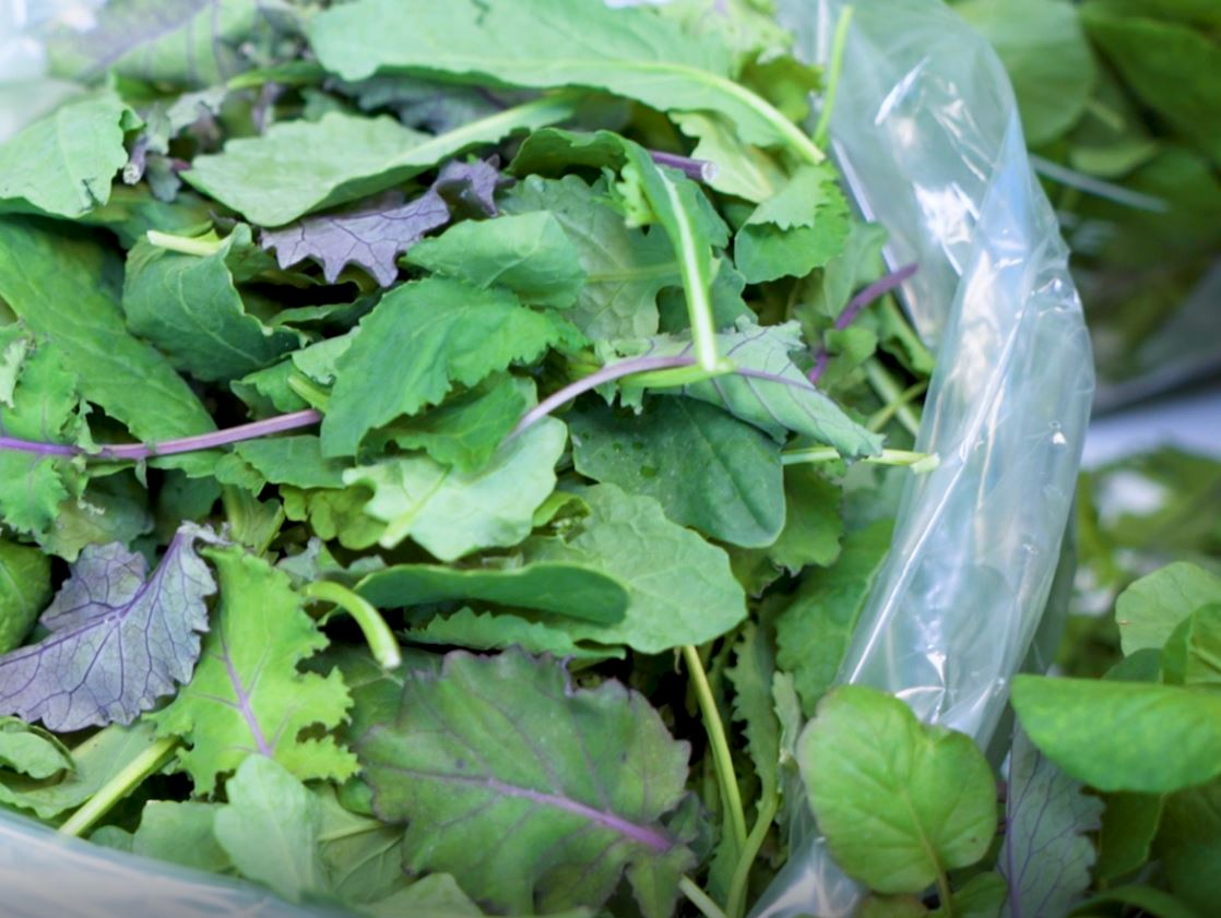 freshpoint-produce-101-tender-greens-kale